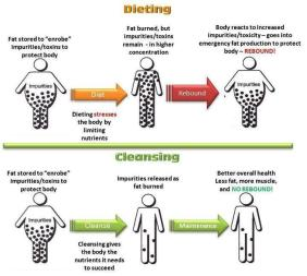 d2136-dietingvscleansing